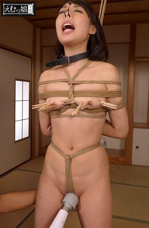 bakujo20171201017